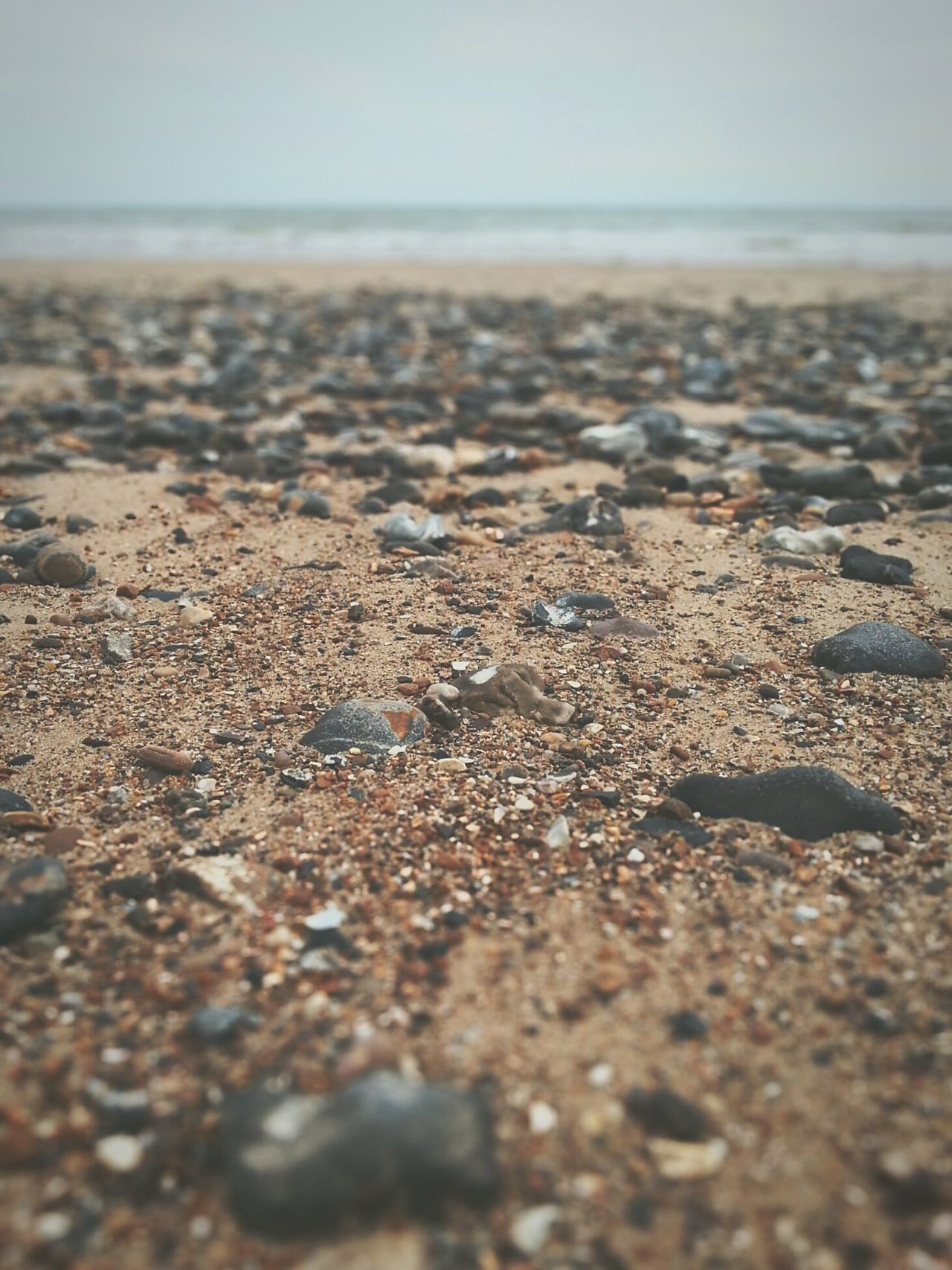Beautiful stock photos of sand, Beach, Beauty In Nature, Day, Horizon Over Water