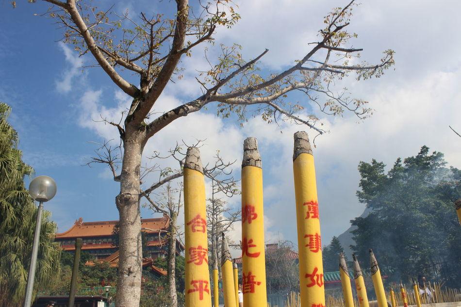 Tree Sky Outdoors No People Day Nature Cloud - Sky Buddhism Tian Tan Buddha (Giant Buddha) 天壇大佛 HongKong Travel Photography Travel Destinations Place Of Worship