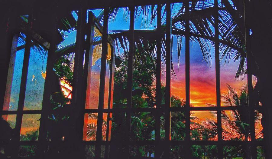കാഴ്ച്ച Window Low Angle View Sky Day Nature No People Outdoors Beautiful Nature Nature EyeEm Nature Lover sunset #sun #clouds #skylovers #sky #nature #beautifulinnature #naturalbeauty Photography Landscape Sunset EyeEmNewHere