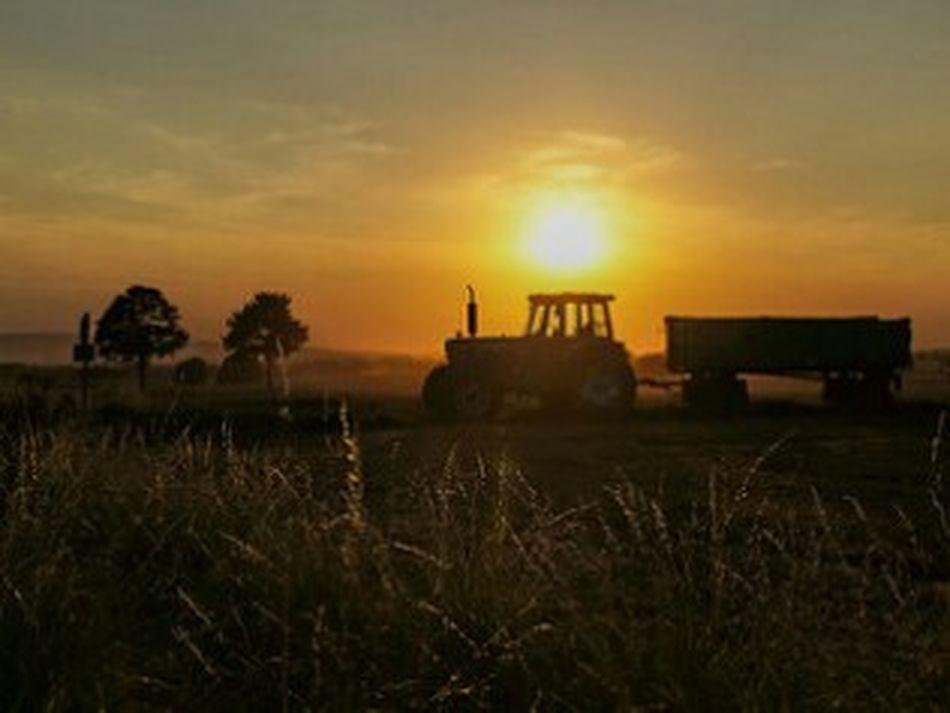 Golden Hour Golden Moments 43 Golden Moment Sonnenuntergang Sonnenuntergänge Nature Enjoying Life GERMANY🇩🇪DEUTSCHERLAND@ Sonnenuntergang Im Sommer Germany