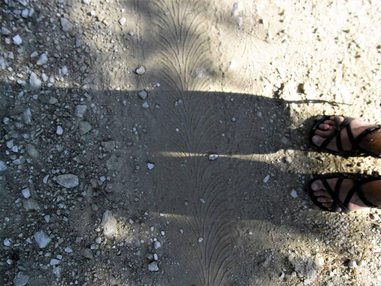 Adult Barefoot Day High Angle View Human Body Part Human Foot Human Leg Lifestyles Low Section Nature One Person Outdoors Real People Sand Shadow Standing Sunlight