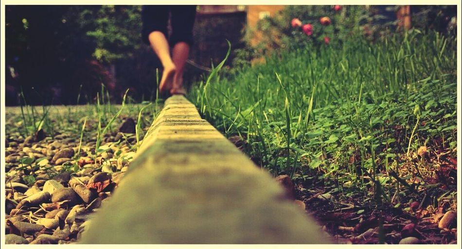 Equilibrium Nature Enjoying Life Nature_collection Eye4photography