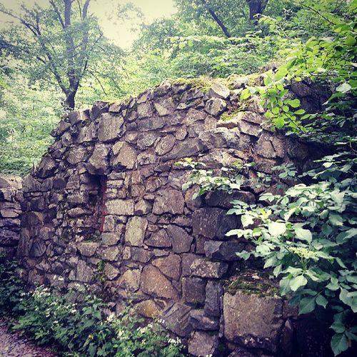 Alte Steine sind toll! #löwenburg #siebengebirge #burgruine #castle #ruin Castle Ruin Burgruine Siebengebirge Löwenburg