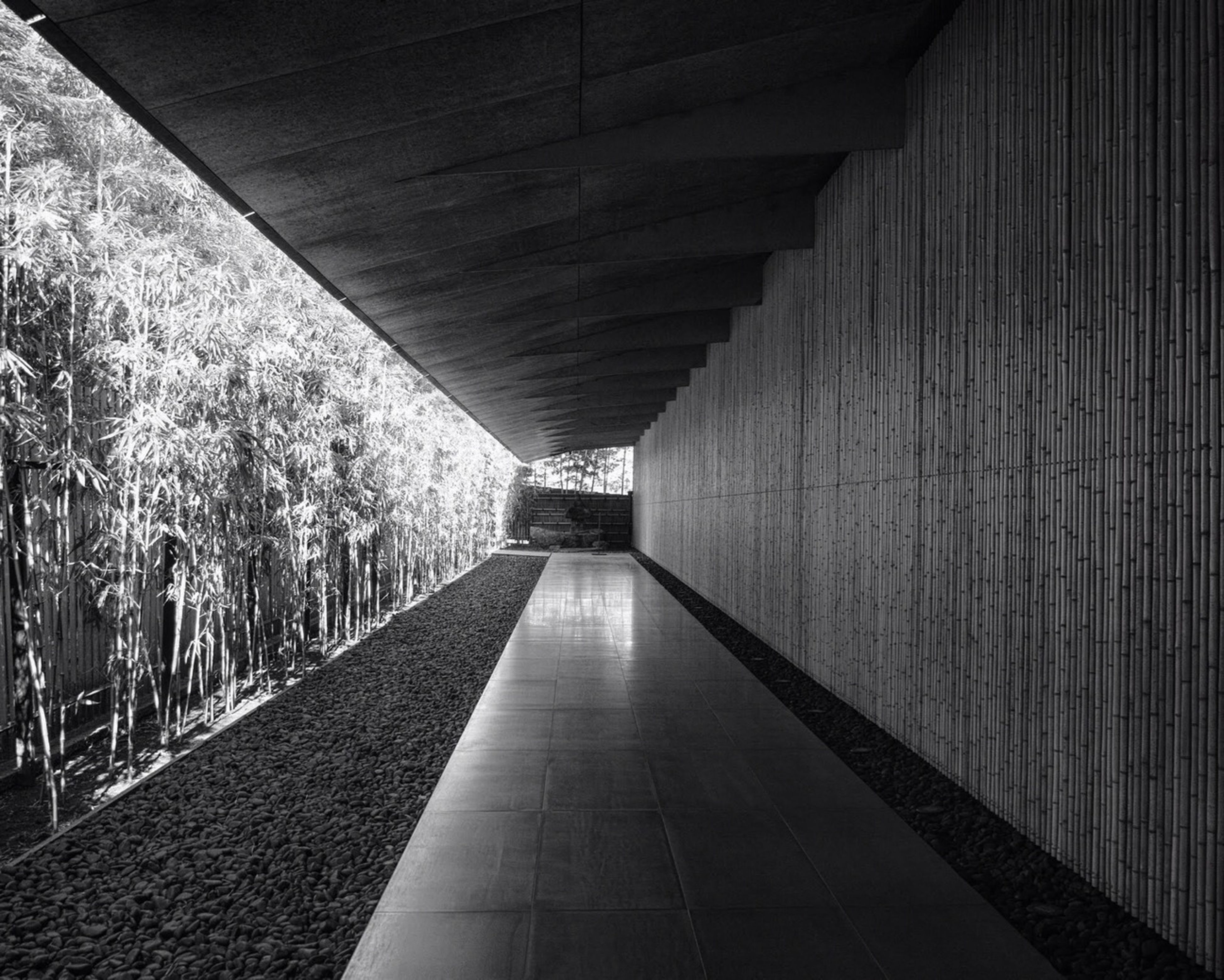 the way forward, architecture, built structure, diminishing perspective, vanishing point, walkway, narrow, in a row, long, indoors, corridor, sunlight, shadow, pathway, railing, footpath, day, empty, ceiling, bridge - man made structure
