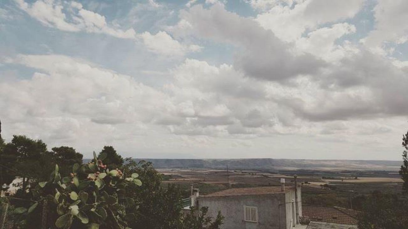 Puglia Italia Italy Southernitaly Sundaymorning Walking Landscape Panorama Alonetime Fichidindia Volgofoggia Volgopuglia Thisispuglia Lovespuglia Loves_puglia