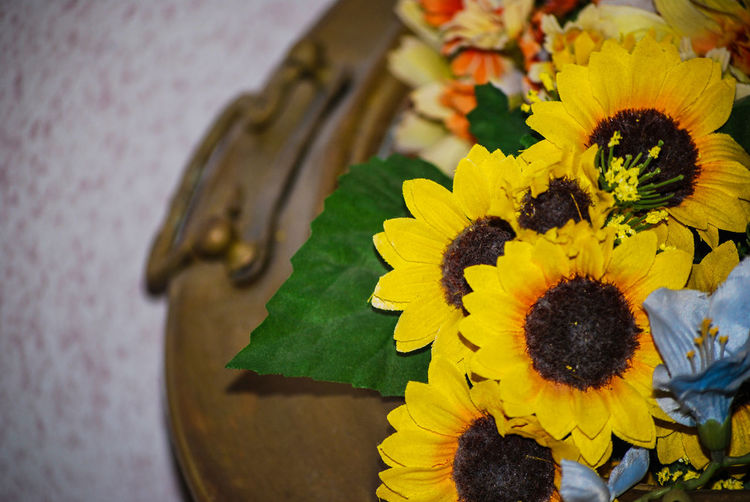 Brazier Close-up Composition Copper  Creative Flower Indoors  No People Sicilian Sunflowers Yellow