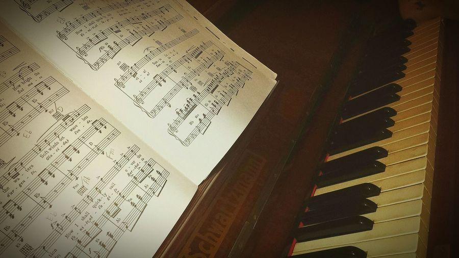 Piano Pianoforte Tenor Estudando
