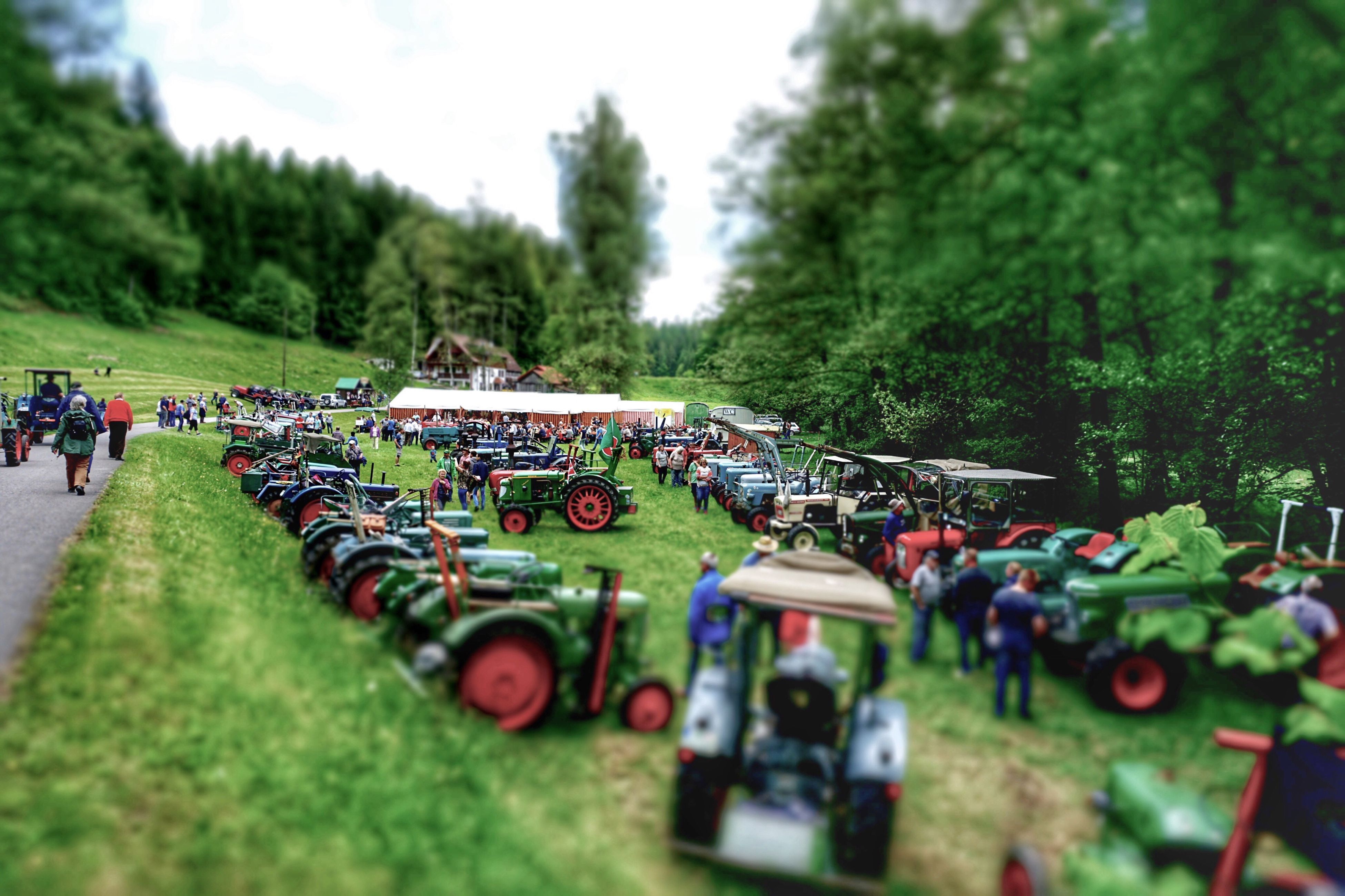 transportation, land vehicle, large group of people, mode of transport, tree, green color, day, field, outdoors, grass, real people, tilt-shift, nature, growth, sky, people