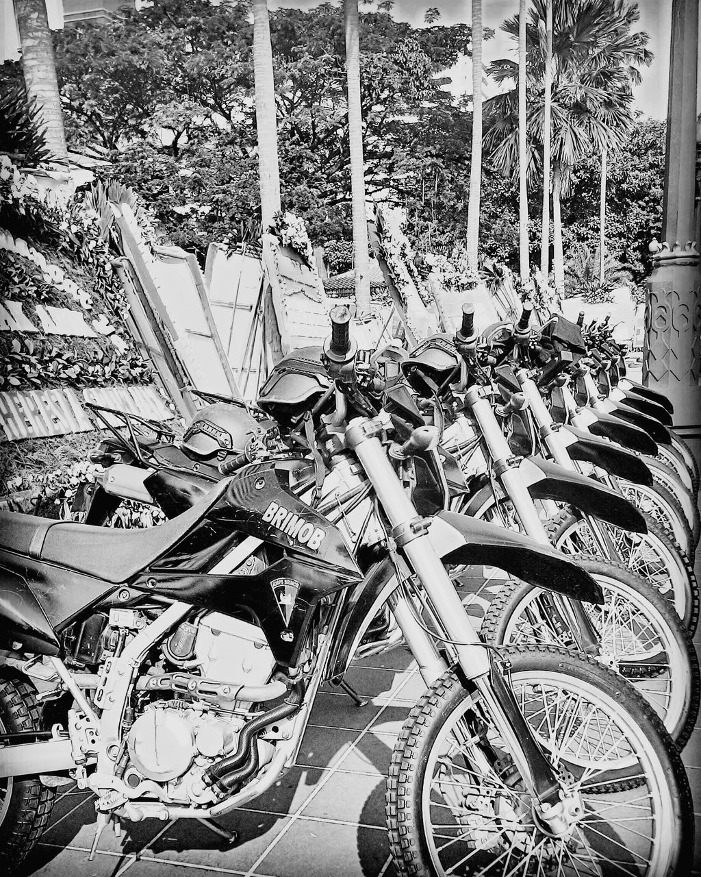 transportation, mode of transport, bicycle, land vehicle, stationary, day, large group of objects, no people, outdoors, bicycle rack, wheel, vehicle seat, tire