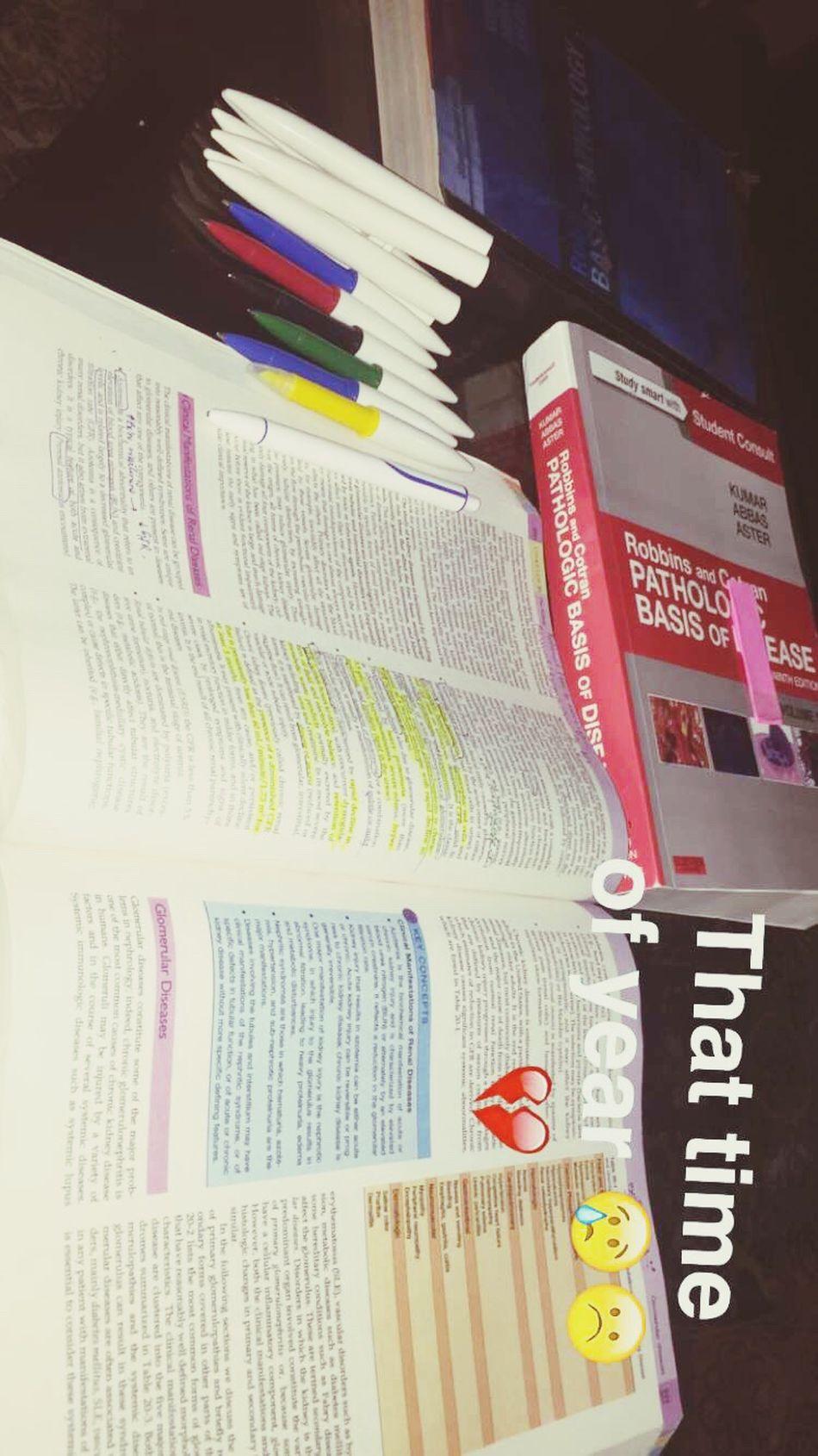 Study Time 😢 Study Hard Hardly Studying 😆😢