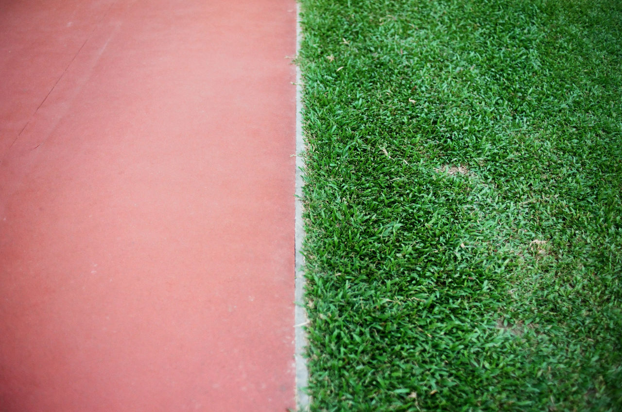 Close-Up Of Grass Growing By Playing Field