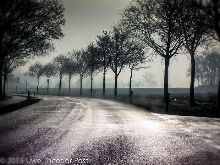 Saalhoff Landscape Landstrasse Streetphotography Drivebyphotography Schreibmalkunst