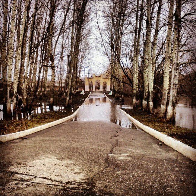 арка парк Park Spring весна вода