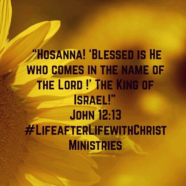 Hosanna Blessed  Spiritual #faith #faithful #tagsforlikes #god #grace #pray #prayers #praying #amen #believe #religion #coexist #spirituality #trust #peace #calm #mind #soul #hope #destiny #wisdom #compassion #forgiveness #thankful #knowledge #meditation #life #meditate