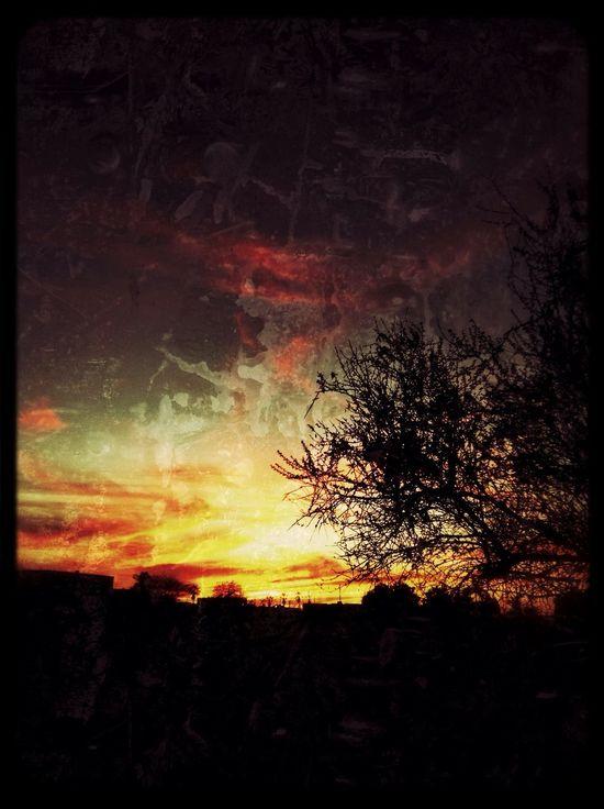 Filterreicher Sonneuntergang Sunset Lotsoffilters