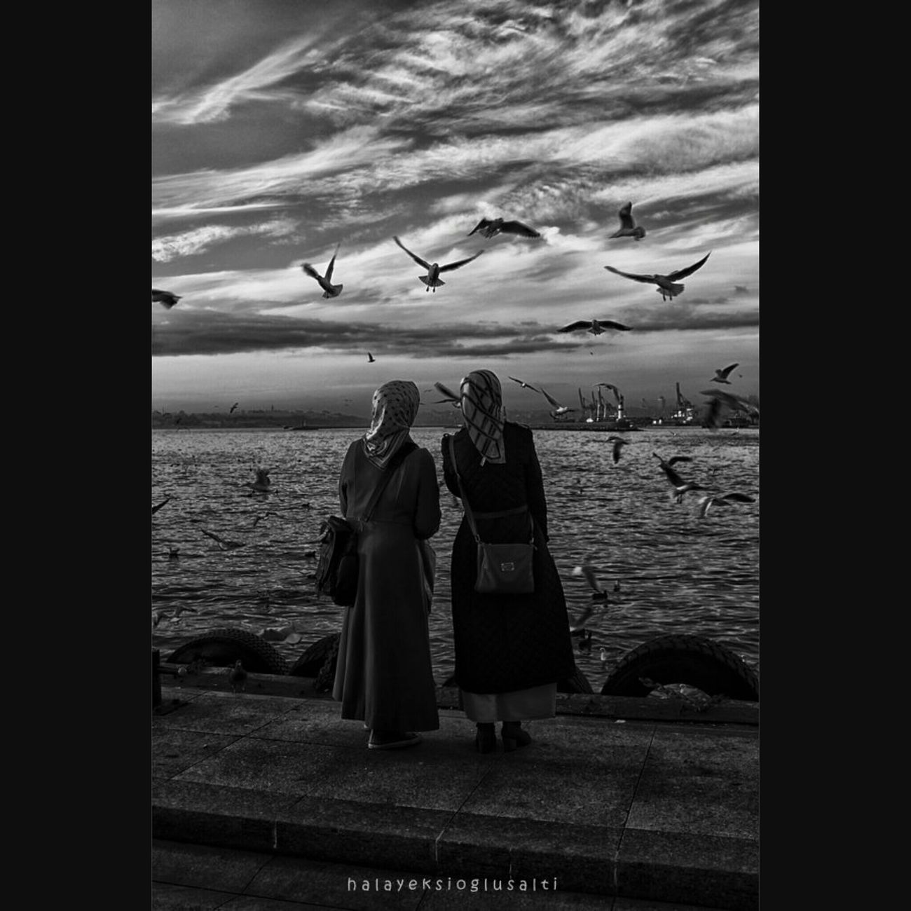 Turkinstagram Turkishfollowers EyeEm Best Edits Turkeyphotooftheday EyeEm Best Shots EyeEm Masterclass Eyeem Monochrome Monochrome_life Monochrome Monday Monochrome