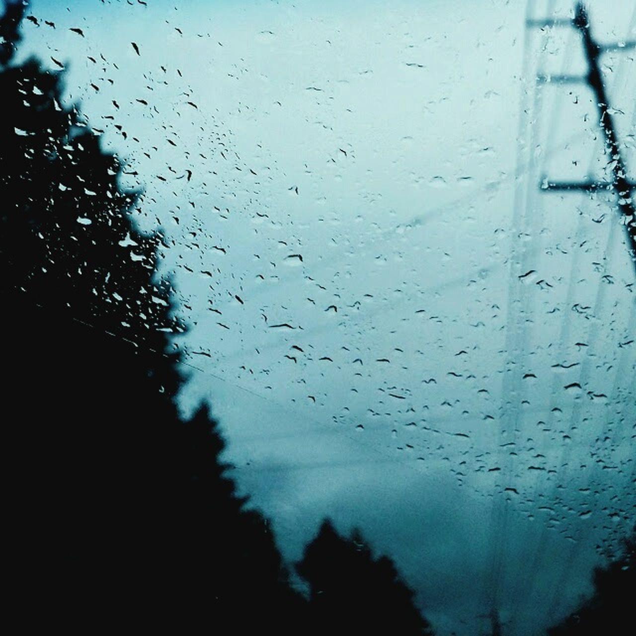 Rain Landlines Windshield Onadrive