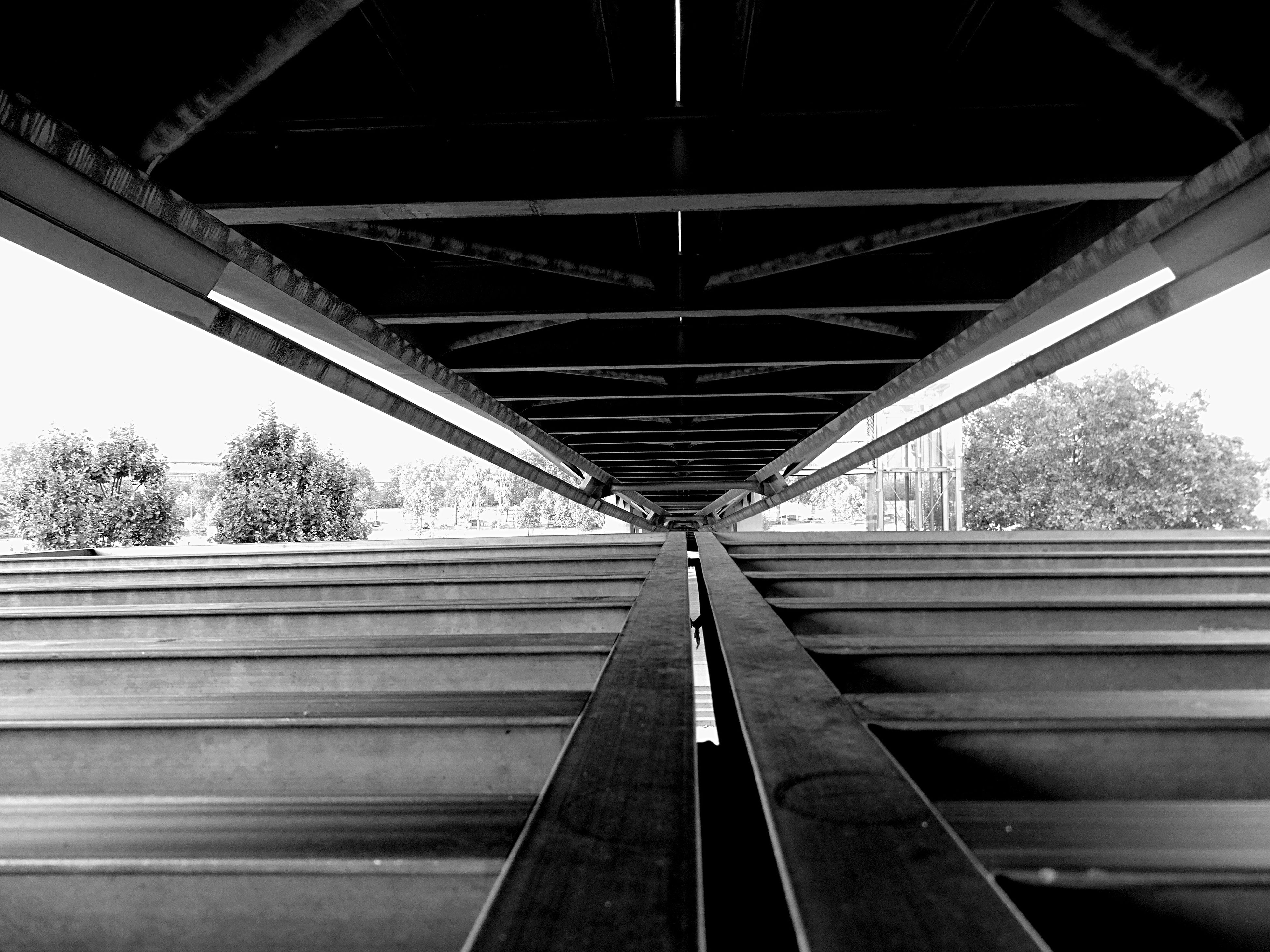 built structure, architecture, connection, low angle view, bridge - man made structure, the way forward, transportation, engineering, tree, railing, metal, diminishing perspective, sky, railroad track, bridge, metallic, support, vanishing point, sunlight, rail transportation