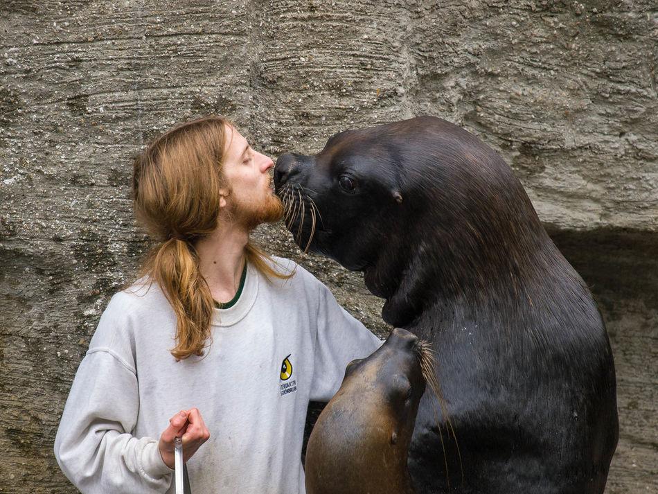 Gimme a kiss Vienna Walrus Zoo