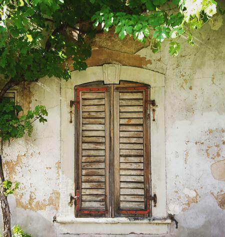 Provence like... but its Annweiler Doorsandwindows Windowshutters Close Window Wooden Shutters Romantik Windows Full Frame Details