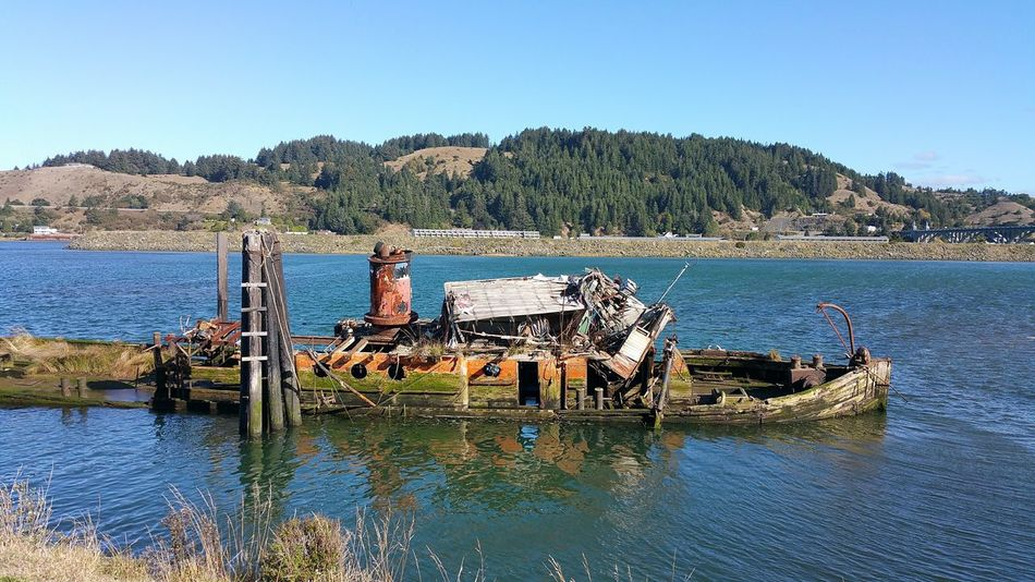 Old boat Sunk Boat Mossy Boat