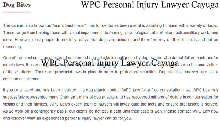 WPC Personal Injury Lawyer, 13 Cayuga Street North, Cayuga, ON N0A 1E0, (800) 964-1839, http://www.wpclaw.ca/Cayuga.html Cayuga Injury Lawyer Cayuga Personal Injury Lawyer Injury Lawyer Cayuga Injury Lawyer Cayuga ON Personal Injury Lawyer Cayuga Personal Injury Lawyer Cayuga ON