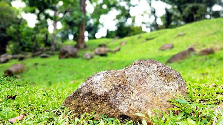 Girlysaturninophotography Stone Stones Stonestructures Grass