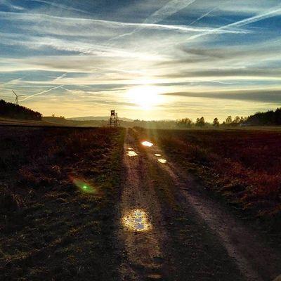 Sun Sunset Sky Clouds Cloud Landscape Landschaft Road Tree Trees Photoarena_sunset Photoarena_nature Twilight My Best Photo 2015