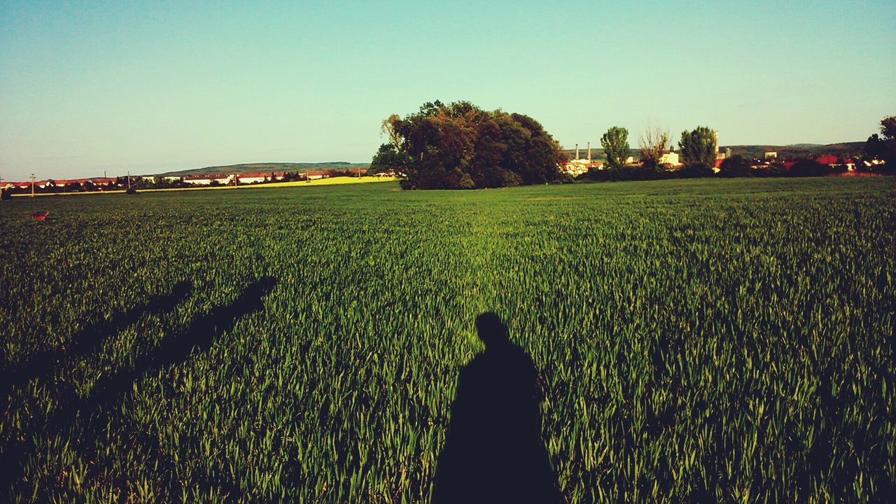 Shadows Of People On Green Field Against Sky