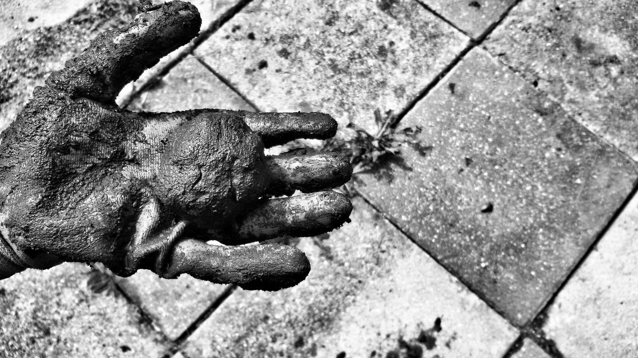 Muddy glove with ball Glove Mud Hand Playing Close-up Ball Monochrome Black And White Photography Monochromatic