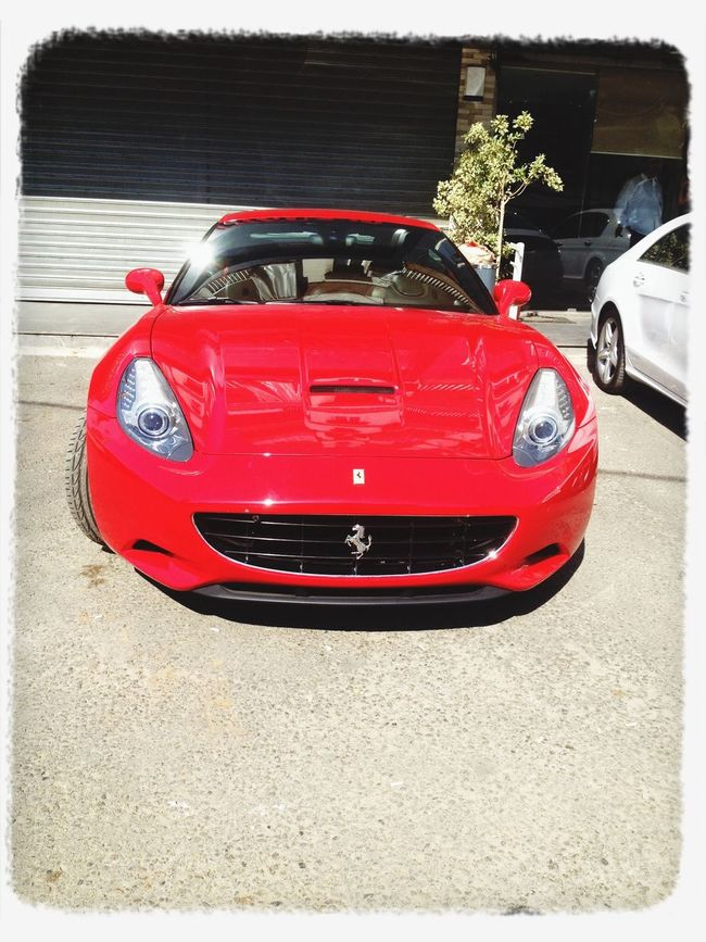 Hanging out, Ferrari, Enjoying The Sun ,
