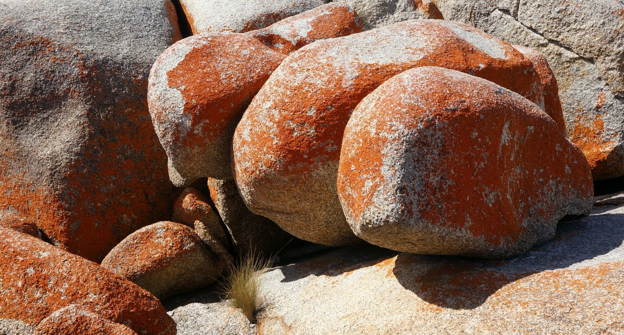Giant red granite boulders. Close-up Day Detail Granite Granite Formations Nature Outdoors Red Boulders Stone - Object