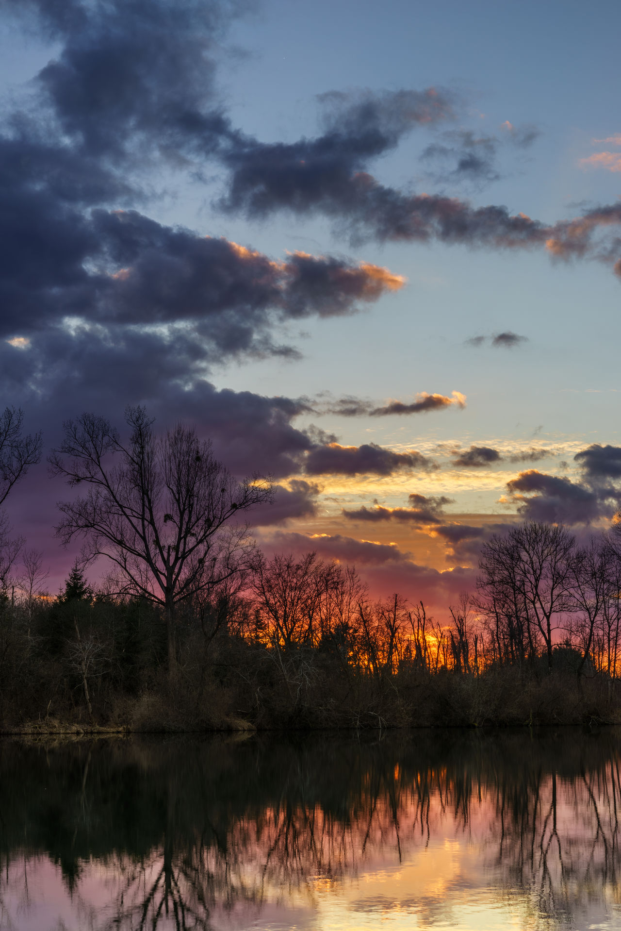 I was walking around a lake near my hometown, then this color explosion did happen Colorful Happingen Landscape Nature Rosenheim Silhouette Sunset Trees