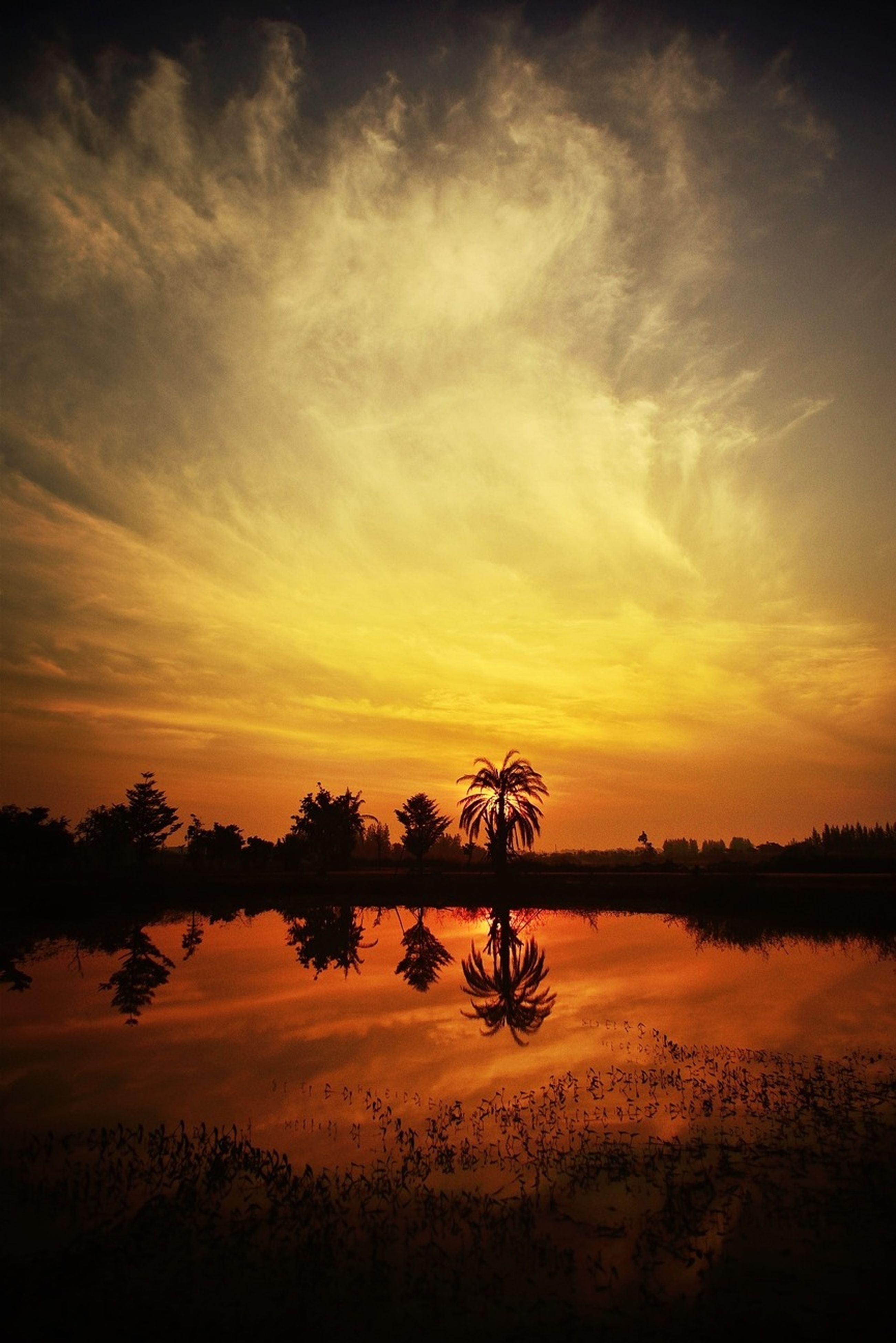 sunset, tranquil scene, tranquility, scenics, beauty in nature, lake, water, sky, silhouette, reflection, orange color, nature, idyllic, tree, cloud - sky, calm, non-urban scene, cloud, majestic, outdoors