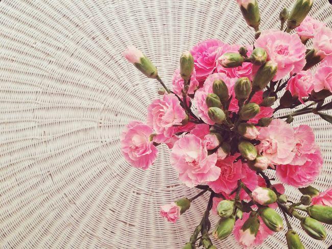 Summer. Flower Flowerporn Spring Summer Decor Coffeetable Pink Green