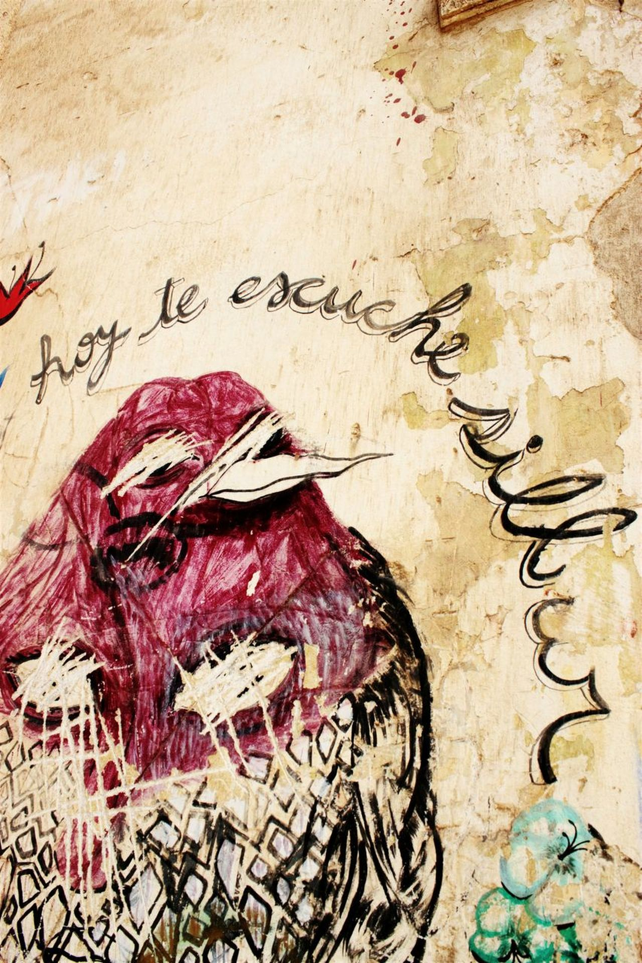 Hoy te escuché silbar Text No People Architecture Day Outdoors Ink Close-up Birdsofinstagram Portrait Wall Painting/grafitti Wall Murals Wallpainting