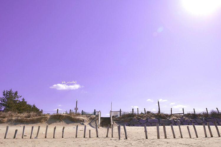 Hi! Landscape Landscapes With WhiteWall Nature Beach Sky Clouds Sunshine Travel South Korea Violet Pastel Fineart Color 신두리해변 여행 D800