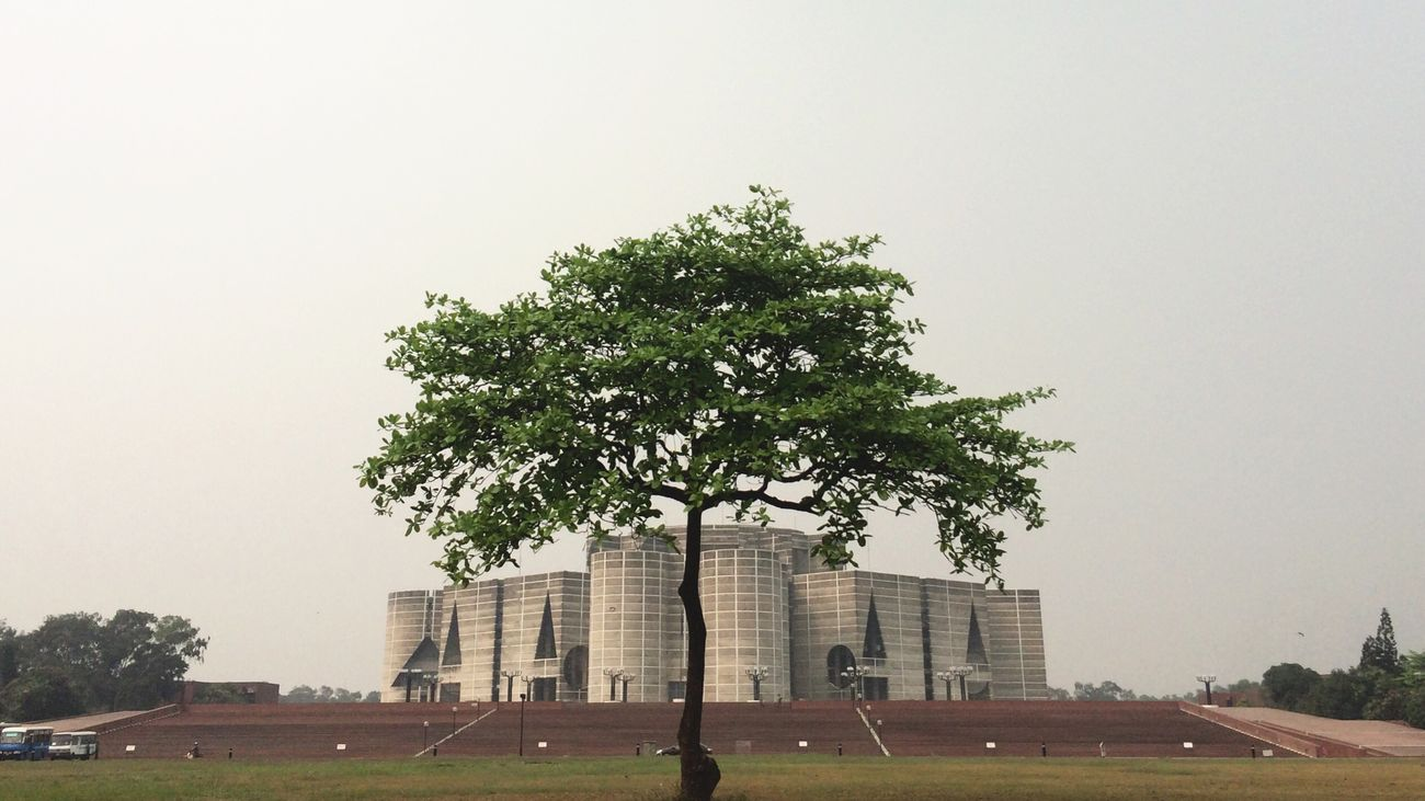 Parliament Democracy Green Plant Singularity Tree Architecture Building Monumental  Symmetry Spring Superimpose Field Daylight Nopeople IPhoneography Bright