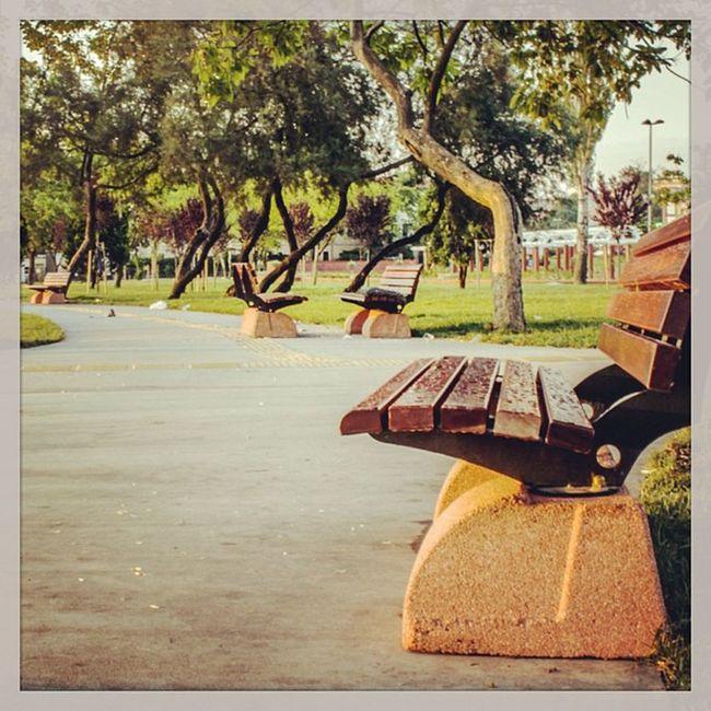 Yalniz Yalnizlik Park Ayvansaray istanbul bos