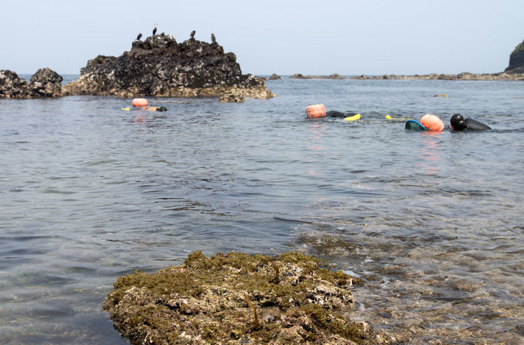 haenyeo who is a female diver picking up sea weed and sea food Beauty In Nature Day Haenyeo JEJU ISLAND  Men Nature Outdoors People Real People Rock - Object Sea Seaside Sky Water Waterfront