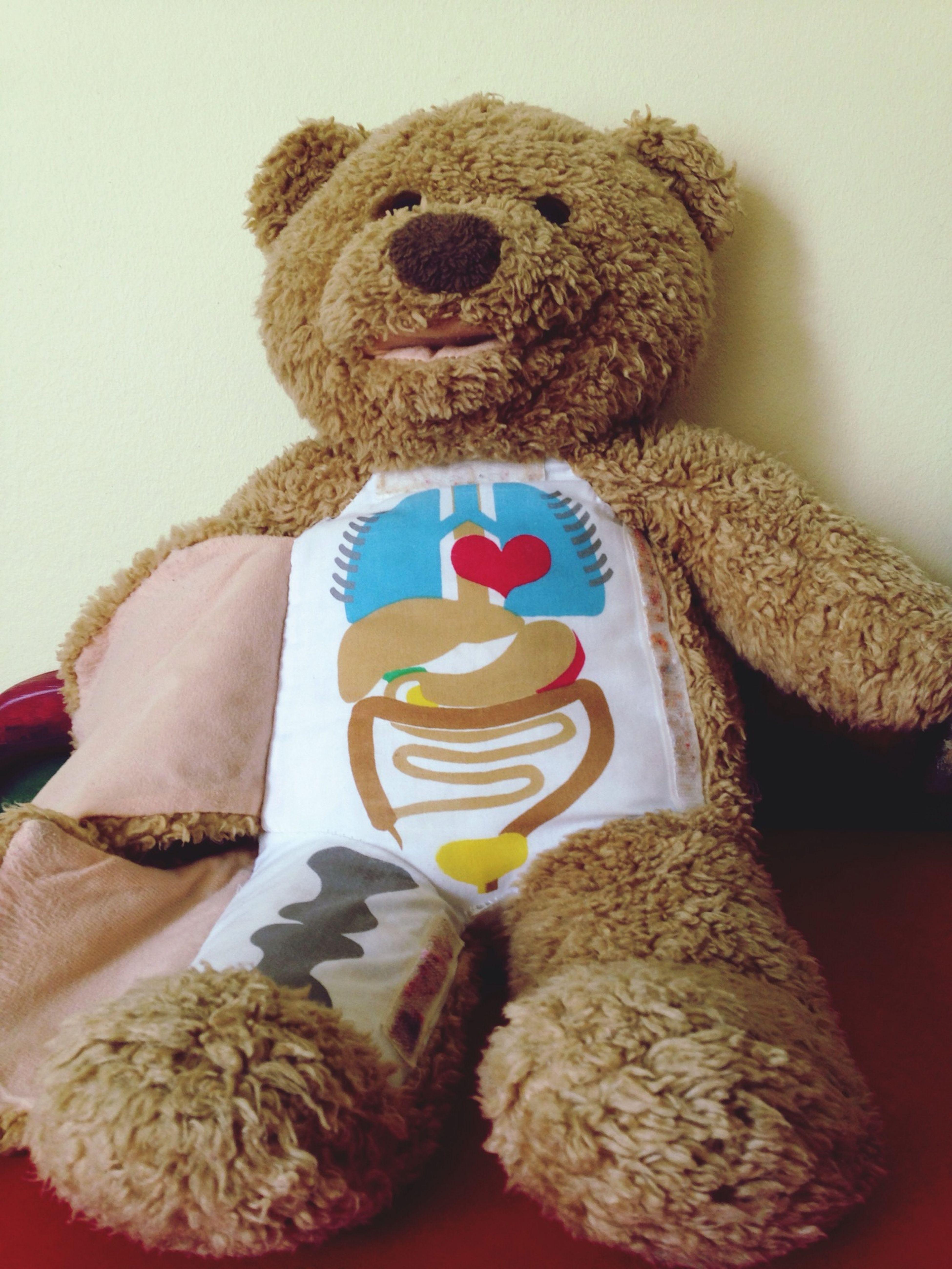 Heartattack Teddy Bear