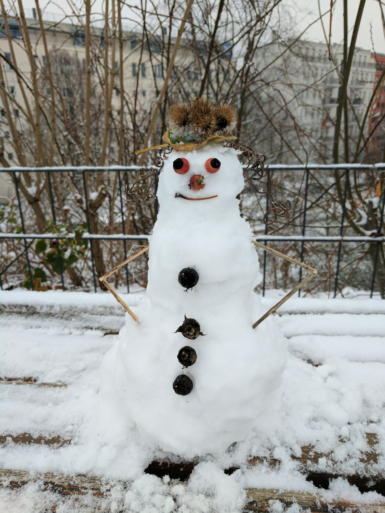 Beautiful stock photos of snowman,  Bare Tree,  Berlin,  Cold Temperature,  Creativity