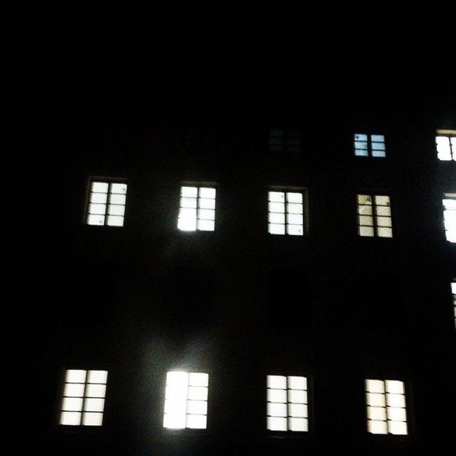 Puławy Livinghere Windows