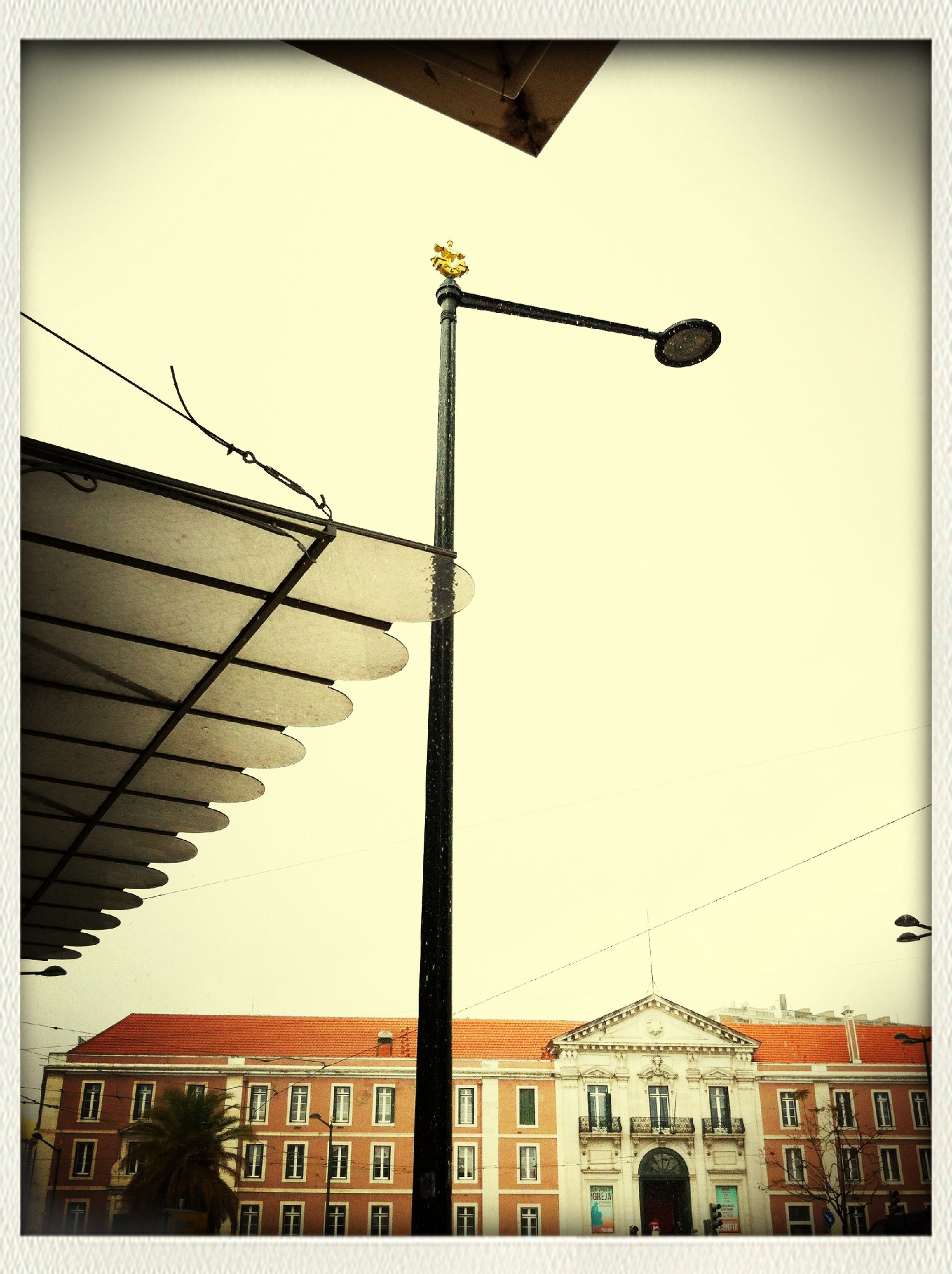 low angle view, transfer print, built structure, building exterior, architecture, auto post production filter, clear sky, bird, sky, street light, flying, high section, lighting equipment, outdoors, wildlife, day, animals in the wild, animal themes, city, building