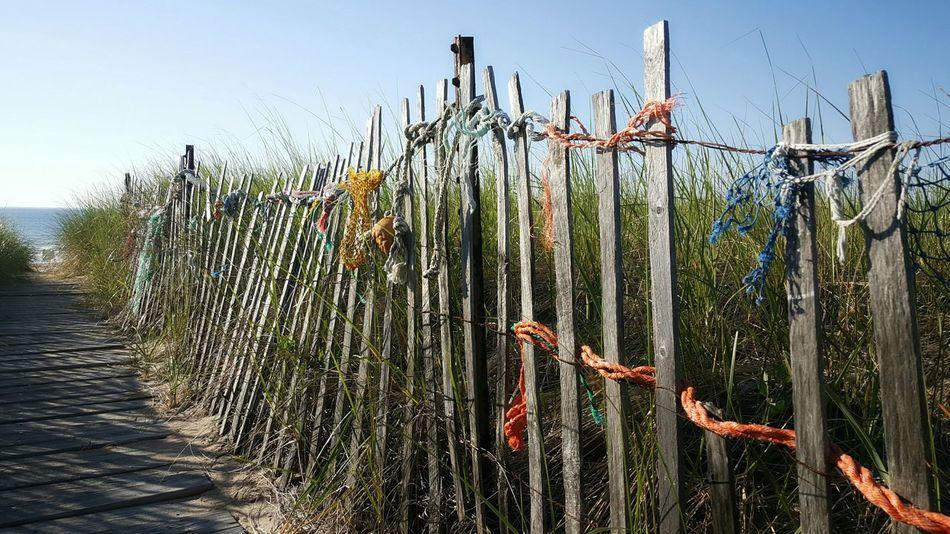 Happy Fourth Of July 🗽 Beach Access S6 Beach Walk Opme⛱ EyeEm Best Shots Maine Photography 🌲