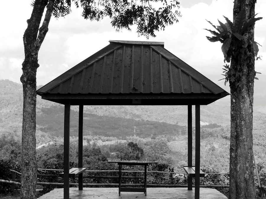 A place for you and i. Blackandwhite Blackandwhite Photography Underthetree Kundasang Sabah Malaysia EyeEmNewHere