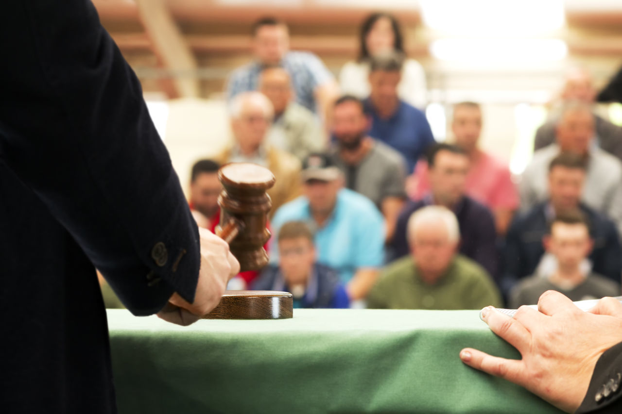 auction bid sale judgment mallet Auction Audience Bid Buyer Close-up Collector Indoors  Judge Jury Mallet Mallet Instrument Mallets People Public Purchase Sale Second Hand Senior Shopper Stage Valuable