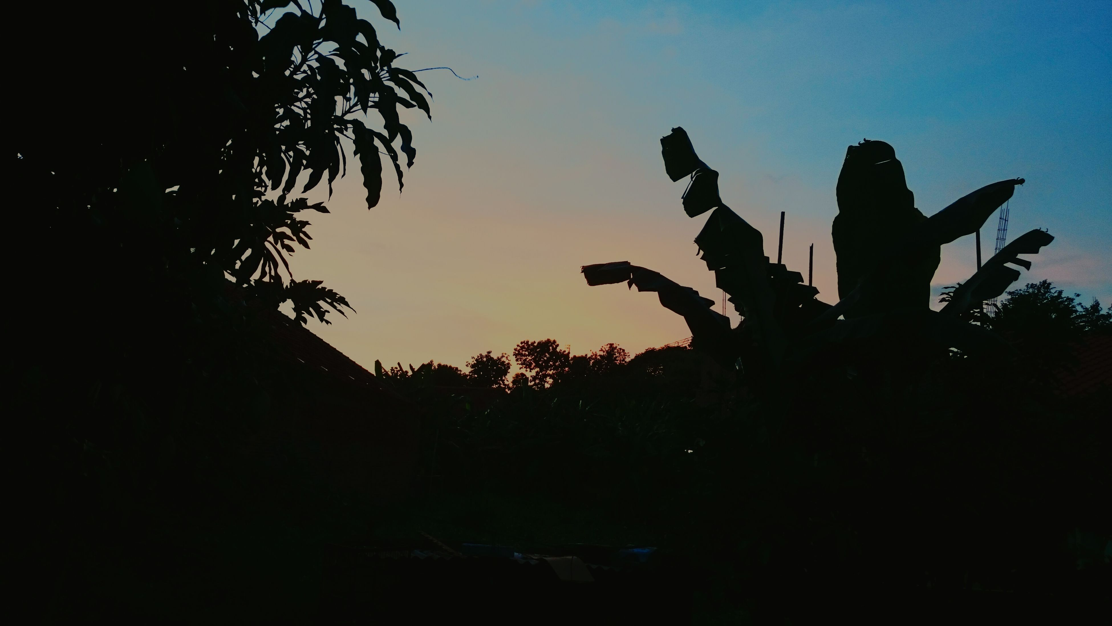 sunset, silhouette, nature, sky, beauty in nature, outdoors, no people, day