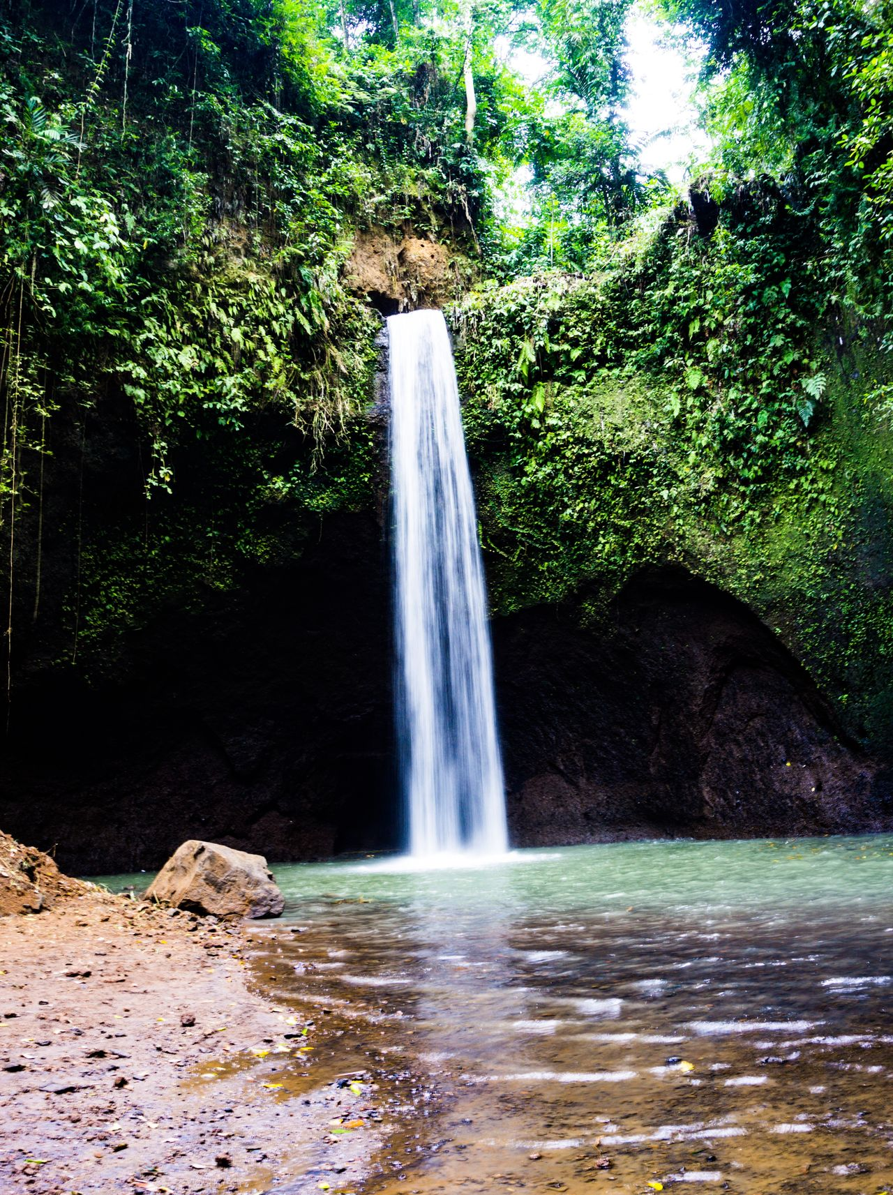 Beauty In Nature Blurred Motion Day Environment Flowing Water Forest Freshness Island Long Exposure Lost World Motion Nature No People Outdoors Plant Power In Nature Rock - Object Scenics Tranquil Scene Tranquility Travel Travel Destinations Tree Water Waterfall