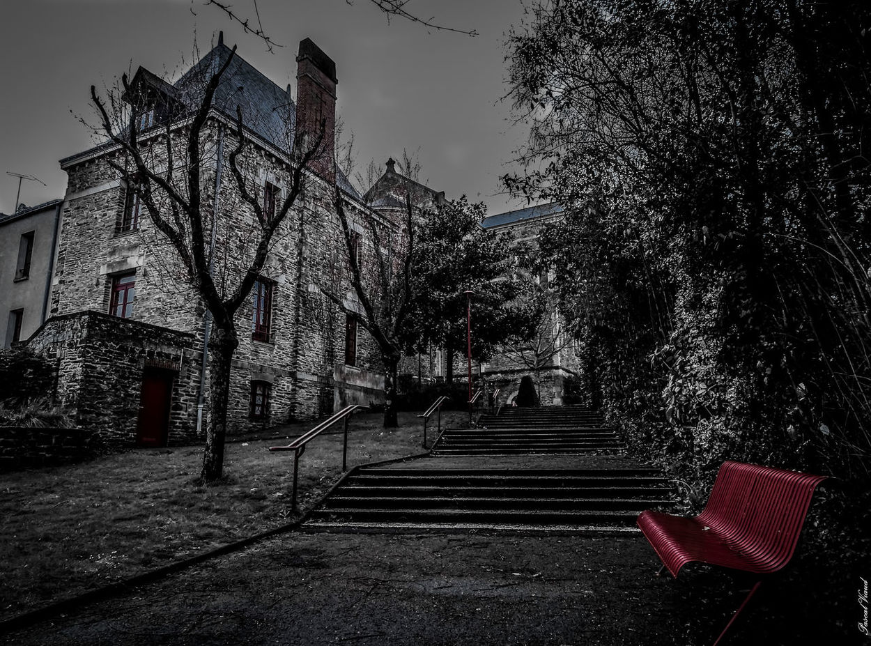 Banc Bench Black & White Blackandwhite Campbon,france Eyeem Photography No People Outdoors Red Color Stairs Stonehouse Tree